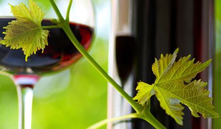 Evénement lié au vin